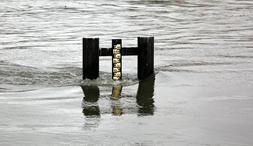 Aktueller Pegelstand des Regens bei Sägmühle